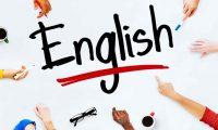 English First Adults, Tempat Les Bahasa Inggris terbaik Untuk Orang Dewasa