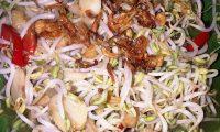 Resep Tumis Taoge Ayam